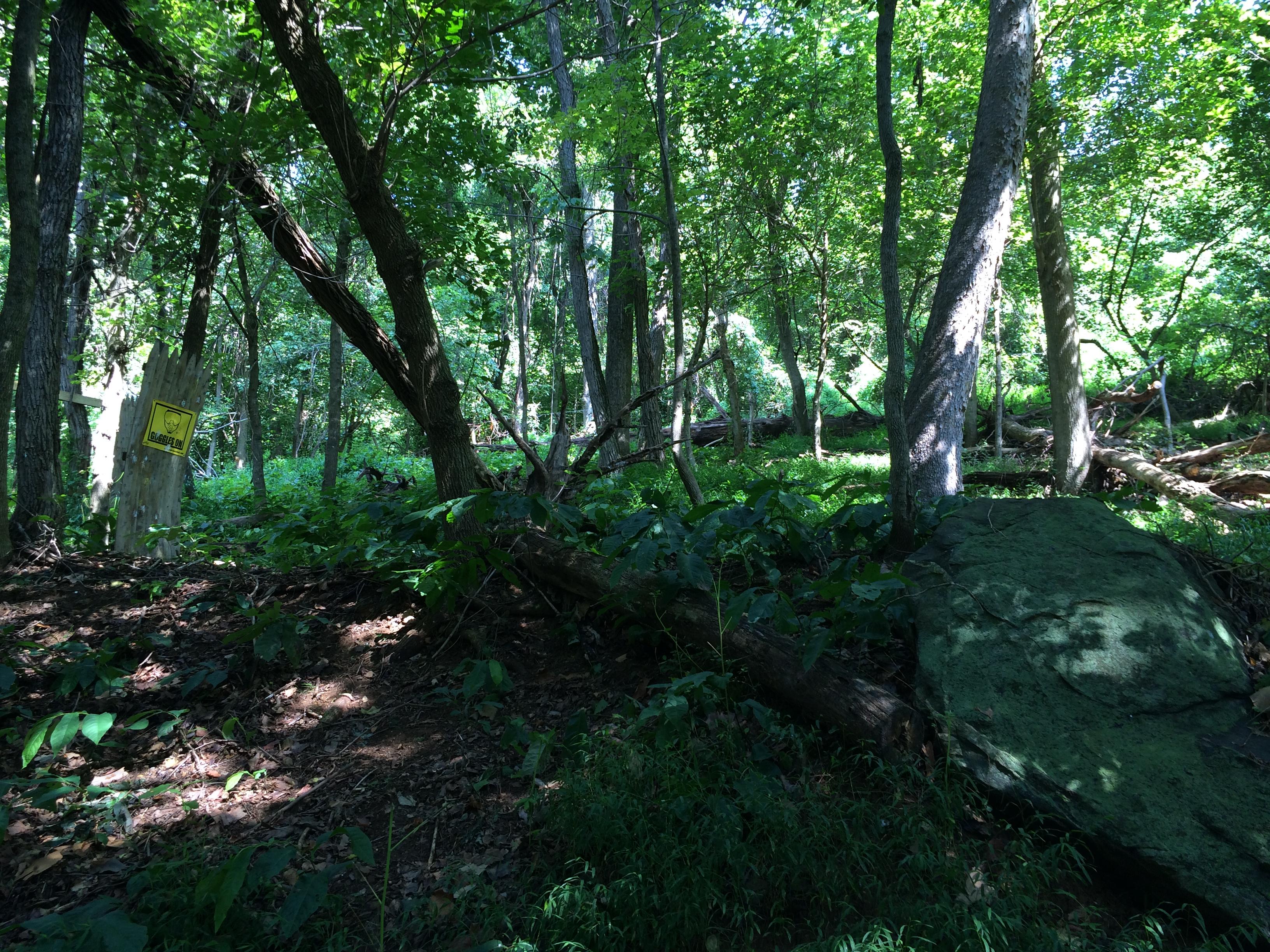 Woodsball Course